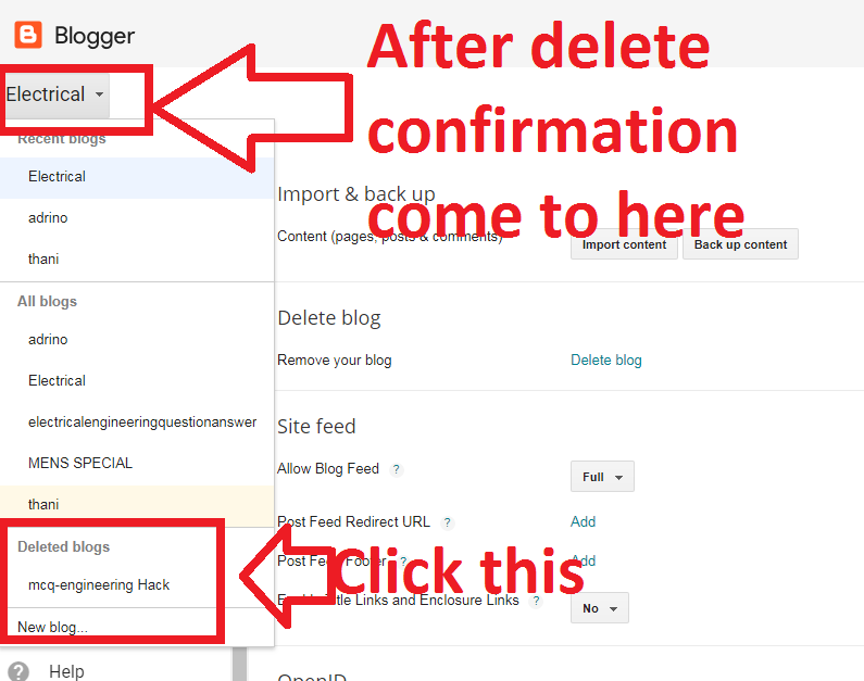 how to permanently delete a website from your history